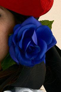 Flor Azulón